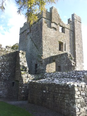 49. Bective Abbey, Co. Meath