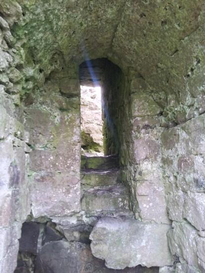 06. Rock of Dunamase, Co. Laois