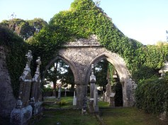 06. Tulsk Abbey & Cemetery, Co. Roscommon