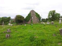 02. Old Kilteale Church, Co. Laois.