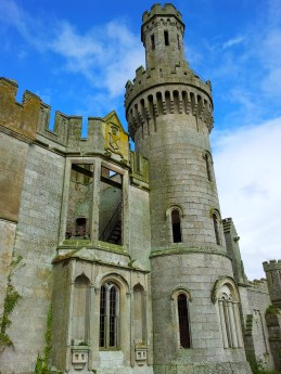 07. Duckett's Grove, Co. Carlow.