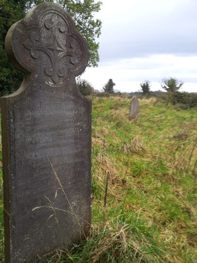21. Tully Burial Ground & Lehaunstown High Crosses