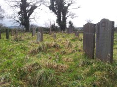 27. Tully Burial Ground & Lehaunstown High Crosses