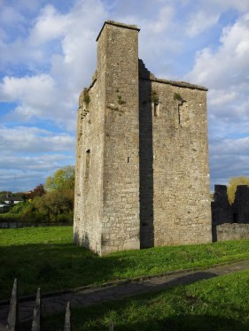 02. The Priory of St. John the Baptist, Co. Meath