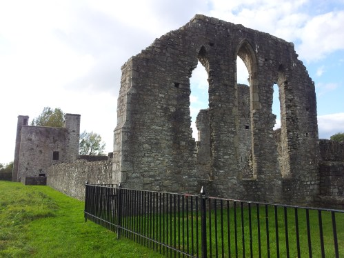 23. The Priory of St. John the Baptist, Co. Meath