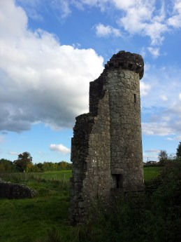 25. The Priory of St. John the Baptist, Co. Meath