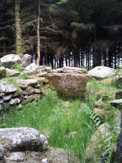 04. Ballyedmonduff Wedge Tomb, Co. Dublin