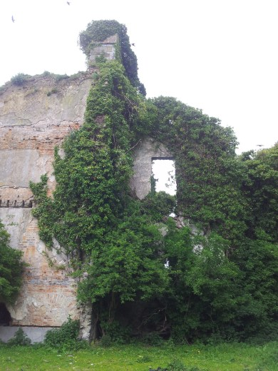 21. Moydrum Castle, Co. Westmeath