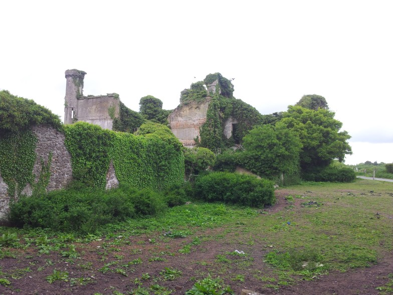 22. Moydrum Castle, Co. Westmeath