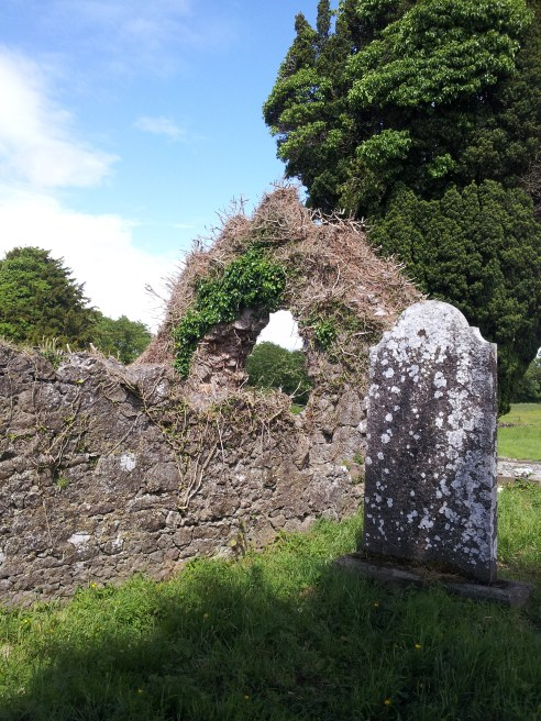 06. Old Downings Church, Co. Kildare