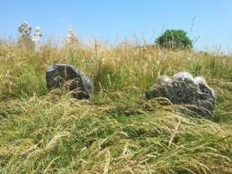 06. Old Longwood Cemetery, Co. Meath