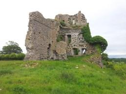 03. Carrick Castle, Co. Kildare