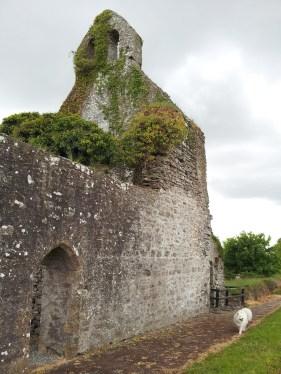 03. Abbeyshrule Abbey, Co. Longford