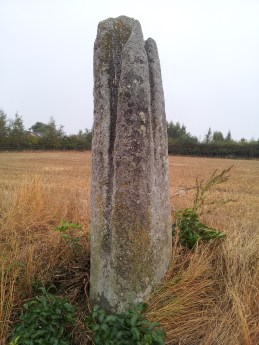 04. Ardristan Standing Stone, Co. Carlow
