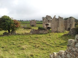 30. Ballyloughan Castle, Co. Carlow