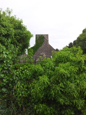 13. Carrick Church , Co. Kildare