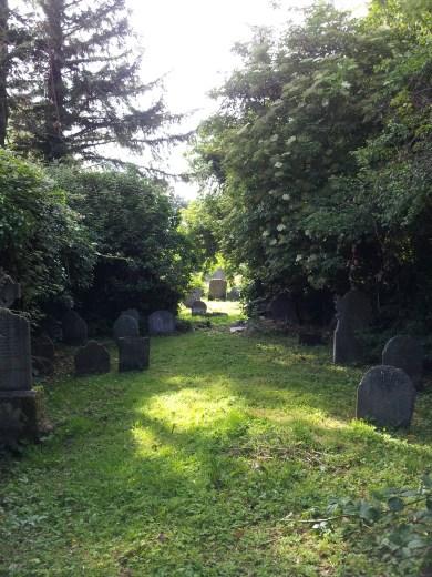 14. Killadreenan Church, Co. Wicklow