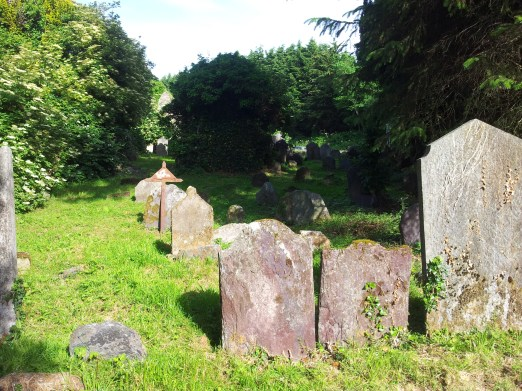 19. Killadreenan Church, Co. Wicklow