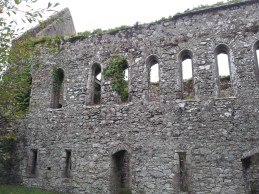 28. Bridgetown Priory, Co. Cork