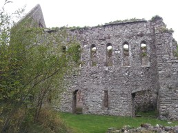 29. Bridgetown Priory, Co. Cork