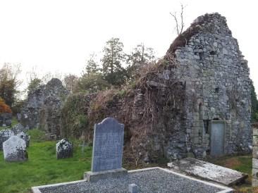 02. Dunleckny Churches, Co. Carlow