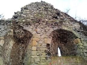 07. Dunleckny Churches, Co. Carlow