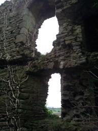 12. Clonmore Castle, Co. Carlow