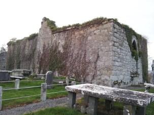 12. Dunleckny Churches, Co. Carlow