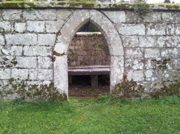 18. Dunleckny Churches, Co. Carlow