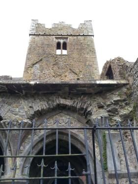 18. Kilcooley Abbey, Co. Tipperary