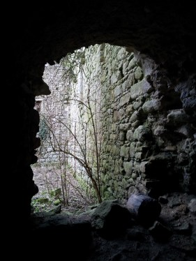 24. Clonmore Castle, Co. Carlow