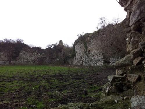 25. Clonmore Castle, Co. Carlow