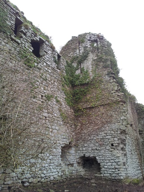 28. Clonmore Castle, Co. Carlow