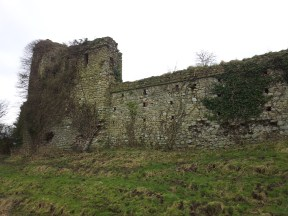30. Clonmore Castle, Co. Carlow