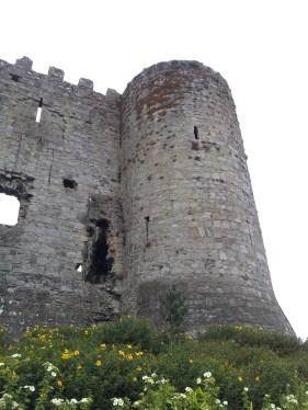 02. Carlow Castle, Co. Carlow