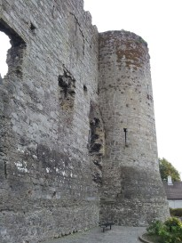 05. Carlow Castle, Co. Carlow