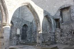 15. St Audeon's Church, Co. Dublin