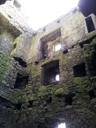 09. Srah Castle, Co. Offaly