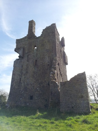 13. Srah Castle, Co. Offaly