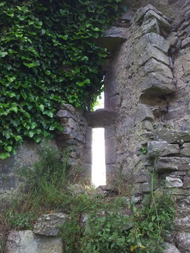 20. Tullaherin Monastic Site, Co. Kilkenny
