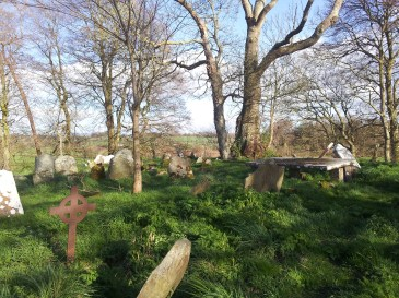 11. Killeen Cormac Burial Site, Co. Kildare