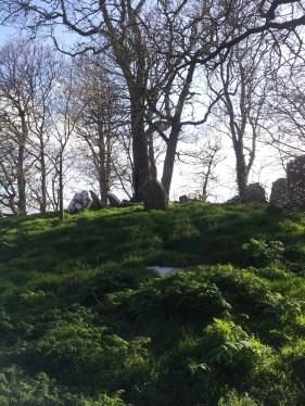 16. Killeen Cormac Burial Site, Co. Kildare
