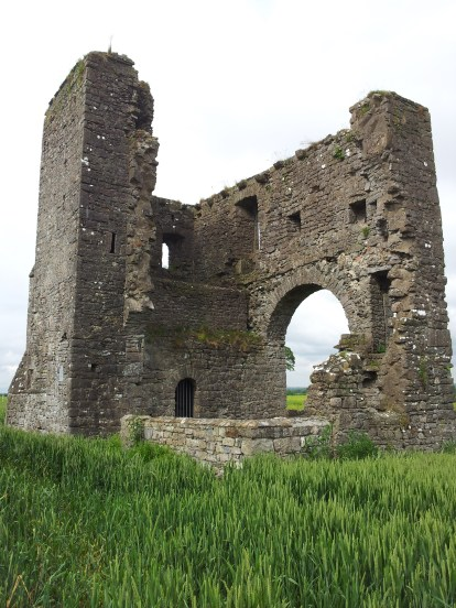 06. Rathcoffey Castle, Co. Kildare