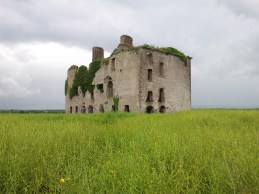 16. Rathcoffey Castle, Co. Kildare