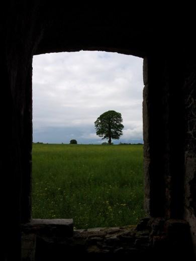 21. Rathcoffey Castle, Co. Kildare