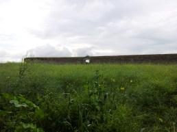 33. Rathcoffey Castle, Co. Kildare