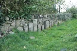 13. Clonenagh Church, Co. Laois