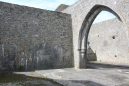 10. Loughrea Priory, Co. Galway