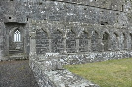 28. Clontuskert Priory, Co. Galway