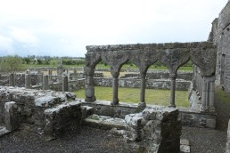 34. Clontuskert Priory, Co. Galway